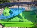Hamsterkooi