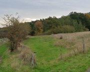 Ardennen,6852 Maissin-Paliseul : Mooie bouwgrond 1040m²,... te koop