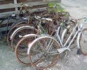 ophaling van alle oude fietsen in heel limburg, 0479750413