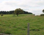 Ardennen,6800 REMAGNE: Bouwgrond, 10a02ca,mooie ligging,.. TE KOOP