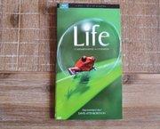 DVD Life - 5 DVD