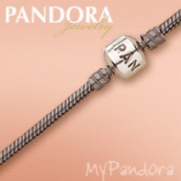255/pandora-armband-18cm-nieuw.jpg